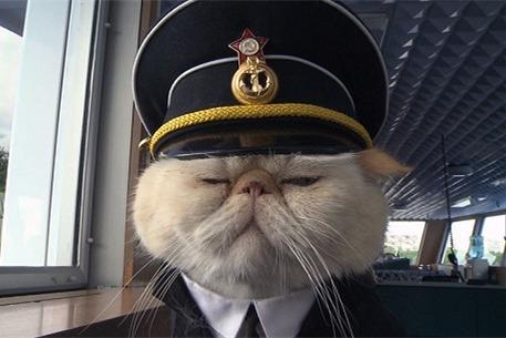 俄罗斯猫船长:有制服有下属 尽职尽责人气高(图)