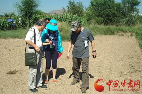 玉帛之路纪行|李永平:渭河流域的早期中国(图)