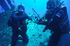 """""""环太""""军演:中国海军潜水分队与多国海军进行联合演练"""
