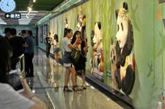 成都地铁3号线正式亮相 熊猫元素成亮点