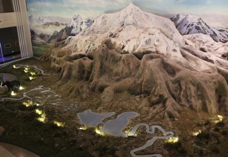 涨姿势!带你走进青藏高原自然博物馆【高清组图一】