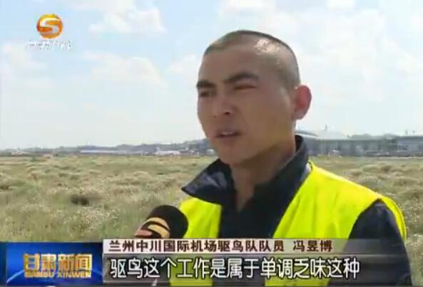 """兰州中川机场驱鸟队:空中生命的""""守护神"""""""