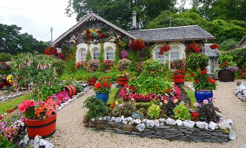 英七旬老人倾心16年打造多彩梦幻花园