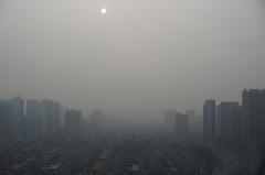 郑州城区浓雾缭绕 建筑笼罩迷雾之中