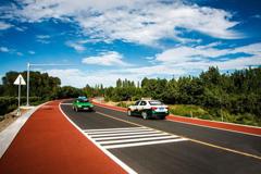 甘肃敦煌建成国内首条最长彩色观光大道