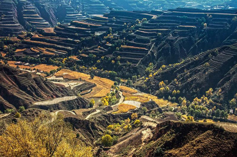 临夏州东乡县以参与式扶贫打通扶贫攻坚最后一公里