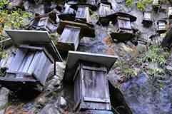 神农架峭壁挂1100多个蜂箱成奇景