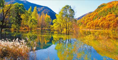 陕北黄土高原 绿色明珠 修复生态发展经济 黄龙美景顶饭吃 美丽中国