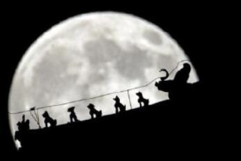 明晚看超级月亮!全年最大 错过要等18年(图)