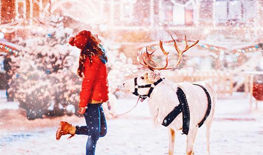 在最美的时间遇见你:莫斯科的梦幻冬季