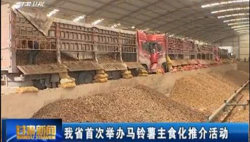 甘肃省首次举办马铃薯主食化推介活动