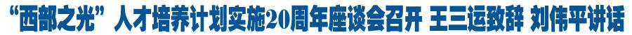 """""""西部之光""""人才培养计划实施20周年座谈会召开 王三运致辞 刘伟平讲话"""