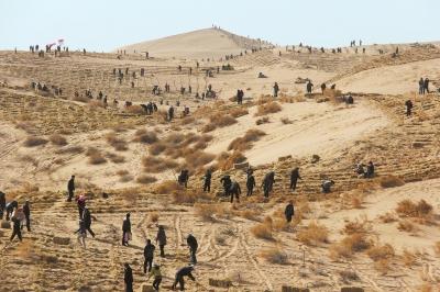 防沙治沙让荒漠披绿 ——武威市实施生态立市战略综述(图)
