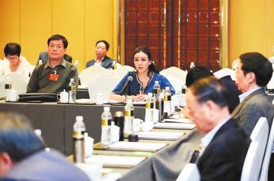 甘肃省政协委员继续分组讨论《政府工作报告》