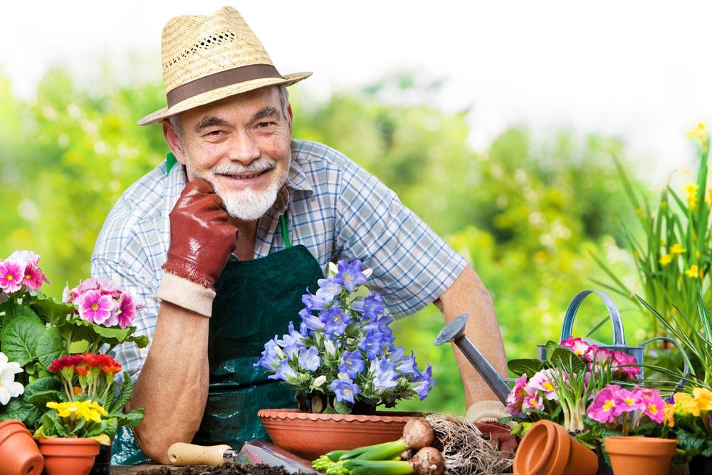 国外老人为何热衷园艺