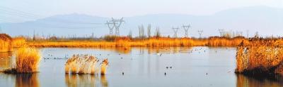 呵护一山一水承载绿色梦想——张掖出台自然保护区治理提升三年计划