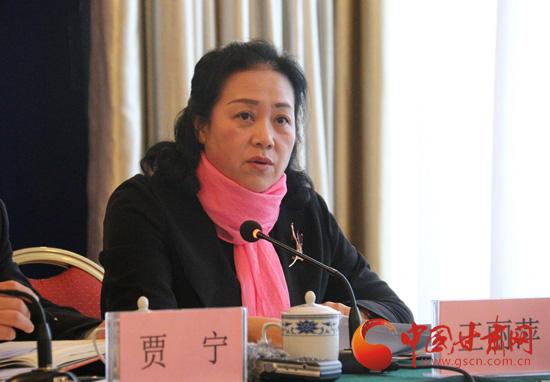 甘肃省人社厅副厅长王丽萍