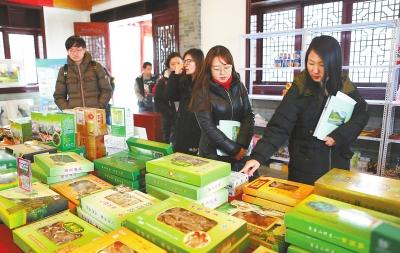 陇南康县借助旅游开发推介大力发展电子商务(图)