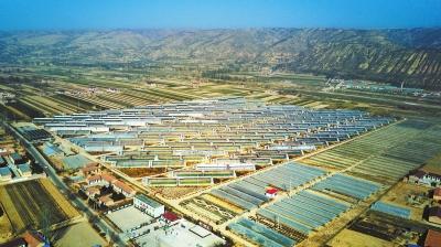 庆阳镇原县开边镇兰沟村设施瓜菜示范园区俯瞰(图)