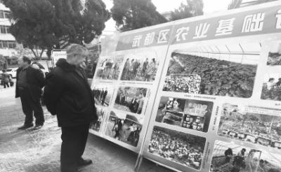 市区群众正在观看陇南武都区经济社会发展成果展(图)