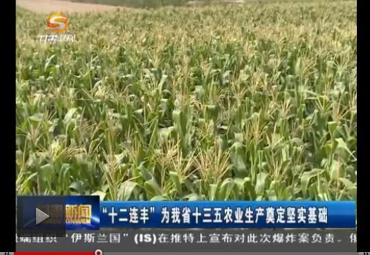 """""""十二连丰""""为我省十三五农业生产奠定坚实基础"""
