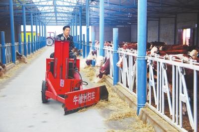 武威民勤县日月牧业公司牛场员工进行机械化作业(图)