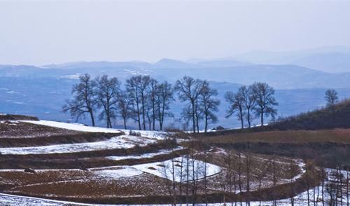 陇拍客|八百里渭河源头雪后风景如画(组图)