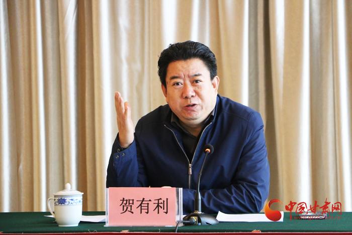 中国三产化/服务化著名学者 贺有利