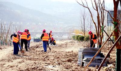 工人在天水藉河生态综合治理一期续建工程建设工地种植树木(图)