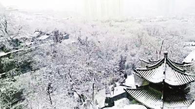 金城三月雪飞舞(图)