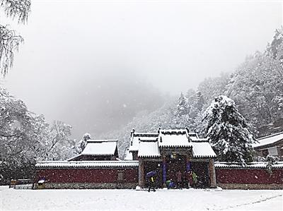 阳春三月雪纷飞 陇原妖娆醉春中(组图)