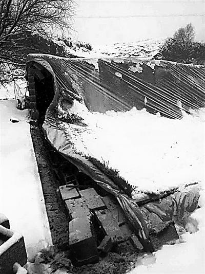 兰州榆中县:积雪压塌棚舍 1000多只鸡被压死