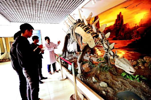 甘肃工业职业技术学院地质博物馆的老师为学生讲解沱江龙化石构造(图)