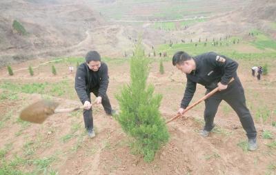 陇南成县县委机关开展春季义务植树活动(图)