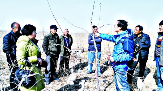 眼下是春耕备耕的关键时刻 白银靖远县农技培训
