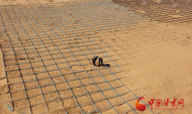 撸起袖子加油干——张掖市临泽县干群携手治沙美家园