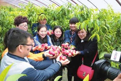 CCTV-7《美丽乡村中国行》摄制组一行在天水秦安县拍摄专题节目(图)