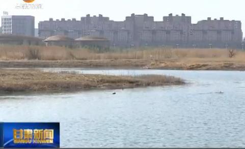张掖市积极整改生态环境问题