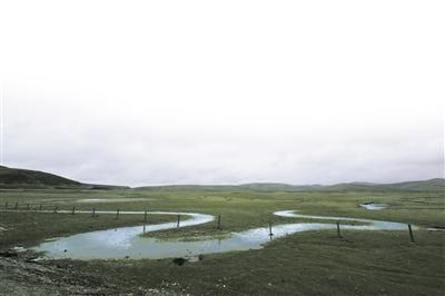 西部地理丨岷县闾井镇:风雪哈古古城,放眼狼渡滩90万亩湿地草原