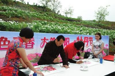 陇南徽县牡丹节开幕(图)