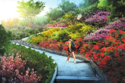 兰山生态景观规划重点建设项目开启
