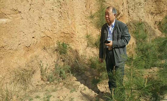 第十一次玉帛之路(陇东陕北道)张天恩先生诗 丨《信天游,访古槐树洼遗址》