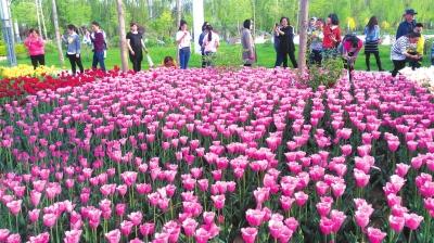 五一小长假985万人次畅游陇原 甘肃省旅游迎来首个淡季向旺季转换高峰