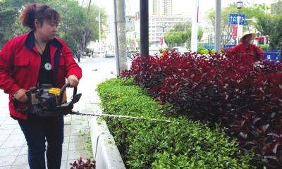 默默守护城市那一抹绿色——走近兰州安宁区绿化所园区队队长马梦圆