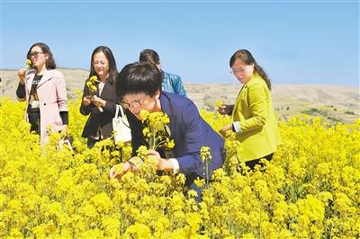 第一届甘肃·会宁油菜花文化旅游节开幕(图)