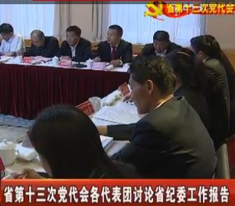 各代表团讨论省纪委工作报告