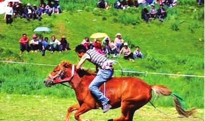 第四届民间传统赛马会在张掖市举行(图)