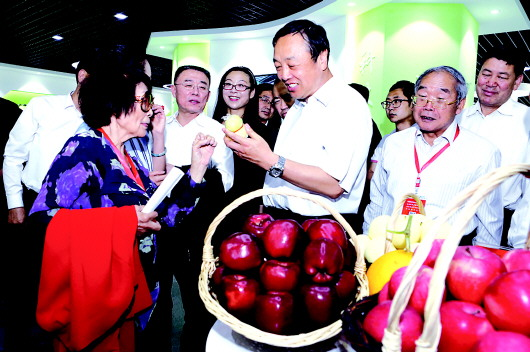 2017天水·武山蔬菜博览会开幕(图)
