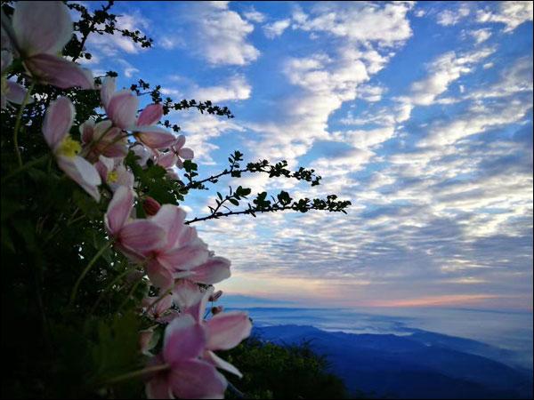 世界环境日:在峨眉山金顶仰望星空触摸苍穹