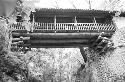 【西部地理】康县团庄龙凤桥:西北古廊桥艺术的美丽遗存